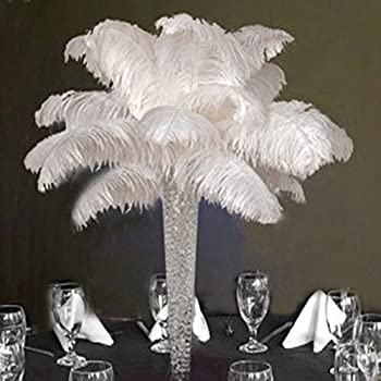 Shekyeon 12-14inch 30-35cm  Ostrich Feathers Plumes for Wedding Centerpieces Pack of 10 White