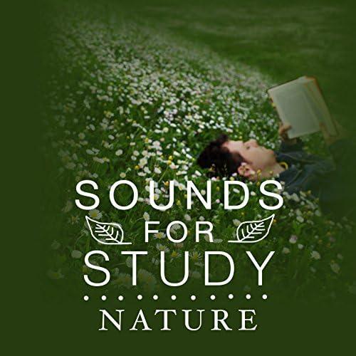 Sounds of Nature, Exam Study Nature Music Nature Sounds & Natural Sounds