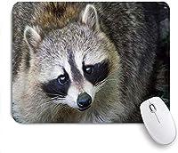 """ゲーム用マウスパッド、アライグマ動物野生動物かわいい愛らしい見上げる、9.5"""" x7.9""""ノートブック用滑り止めラバーバッキングマウスパッドコンピューターマウスマット"""
