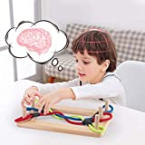AVAH Tangle Master 3D Game Knots Puzzles Wooden Colors Rope Knots String Solution Central Brain Teaser for Adults/Kids Game