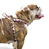ZOOZ PETS Snoopy No Pull Dog Harness for Small Dogs and Large Breeds - Safe Adjustable Step in Harness for Pets – Comfortable Dog Vest for Small and Large Breeds - Designed by Zoozpets, Snoopy Brand