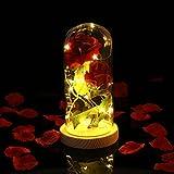 LEDMOMOLa Belle de la Bête Red Silk Rose et Led Light dans un dôme de verre sur une base en bois pour la décoration de club de fête d'anniversaire de mariage