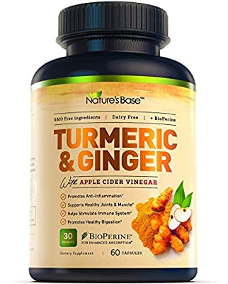 Turmeric Curcumin with Ginger & Apple Cider Vinegar, BioPerine Black Pepper, 95% Curcuminoids, Natural Joint & Healthly Inflammatory Support, Antioxidant Tumeric Supplement, Made in USA, Nature's Base (60 Count) (60 Count)