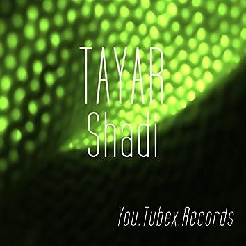 Tayar Shadi
