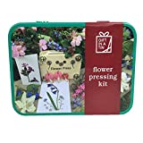 Mini Blumenpresse, miniature flower pressing kit -