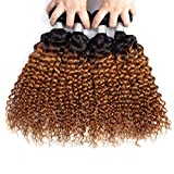 Imayli Ombre Brazilian Curly Hair 4 Bundles Wet and Wavy Kinky Curly Ombre Human Hair Weave 2 Tone Deep Wave Hair Extensions 1B/30 Color(16 16 18 18)