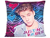 Justin Bieber Velveteen Cushion Multi Color Zebra Super Soft