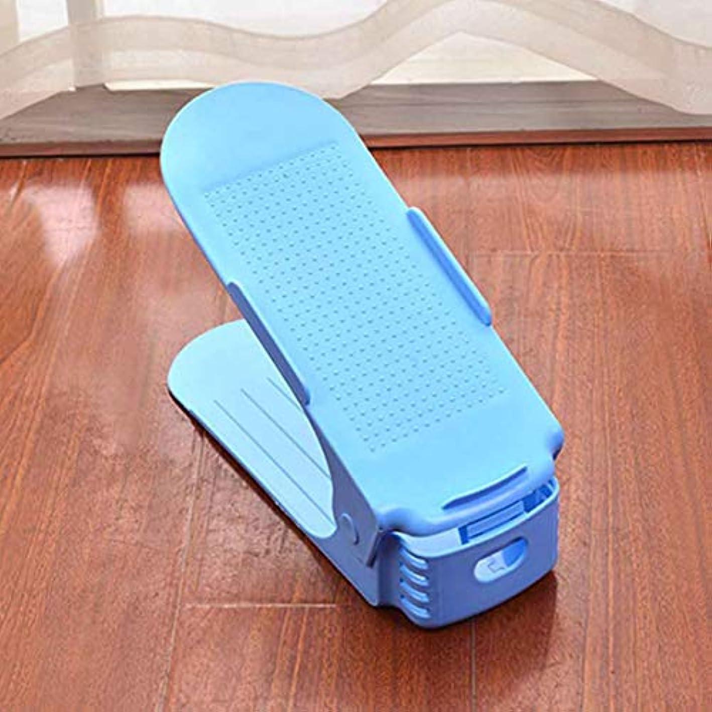 SHILEI Professional Home Use Shoe Organizer Modern Double Cleaning Storage Shoe Rack Living Room Convenient Shoebox Shoes Stand Shelf lo121531 Blue Color