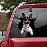 Ocean Gift Rat Terrier Car Decals, Dog Car Stickers Pack of 2 - Realistic Rat Terrier Stickers for Car Windows, Walls Series 53 Size 8' x 8'
