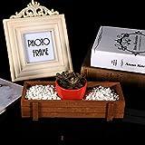 Jopwkuin Macetero, Caja de Madera con Marco Estable, 22,5 x 8,4 x 4,1 cm para jardín, balcón