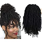 2 Packs Passion Spring Twists Synthetic Crochet Hair Extensions 12 inch 24 strands/pack Ombre Crochet Twist Braids Fiber Fluffy Curly Twist Braiding Hair Bulk (1B#) …