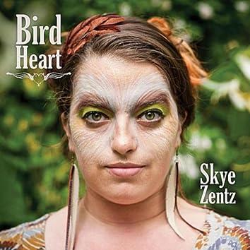 Bird Heart