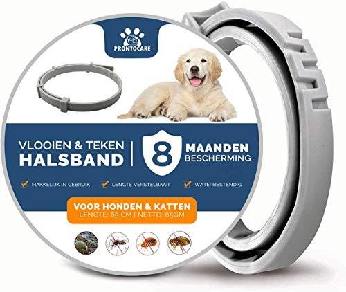 Vlooienband Hond Premium - Anti Teken - Grote & Kleine Hond - Halsband - 8 maanden bescherming