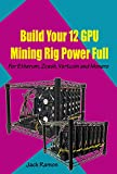 Build Your 12 GPU Mining Rig Power Full: For Etherum, Zcash, Vertcoin and Monero (English Edition)