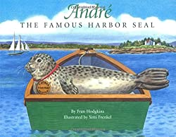 Andre the Famous Harbor Seal