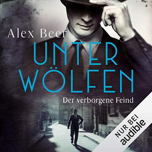 Der verborgene Feind Audiobook By Alex Beer cover art