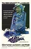 Movie Posters J. D.'s Revenge - 27 x 40