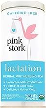 Pink Stork Lactation: Herbal Mint Nursing Support Tea -Organic Loose Leaf Tea in Biodegradable Sachets -Natural Breastfeeding Support -Enhance Breastmilk Nutrition, Supply