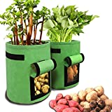 DANIVE Potato Grow Bags, 2 Pack 10 Gallon Garden Boxes, Vegetables Planter Bags, with Handle, Hook and Loop Window, for Sweet Potatoes, Carrots, Peanuts, Ginger, Garlic