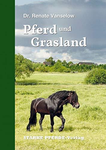 Pferd und Grasland