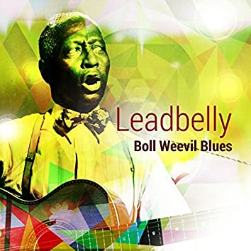 Boll Weevil Blues