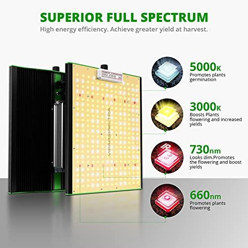 full spectrum light source