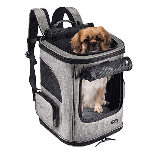 Lampop Haustier Reise Rucksack Haustier Rucksäcke haustiertragetasche Atmungsaktive Outdoor Faltbarer für Kleine Hunde und Katzen bis 7kg