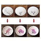 Cold Hot Temperature Color Changing Sakura Sake Cup Japanese-style Ceramic Cherry/Peach/Pl...
