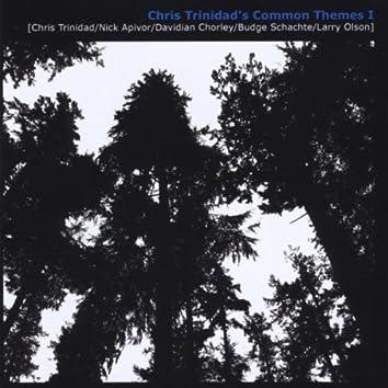 Chris Trinidad's Common Themes I (feat. Larry Olson, Nick Apivor, Davidian Chorley, & Budge Schachte)