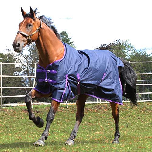 Gallop Pferde-Outdoordecke Keine Füllung 0g Kein Hals, EU 115cm