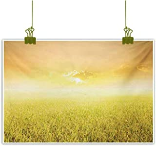 Homrkey Simulation Oil Painting Rice Field Farm and Sunset Countryside Agriculture Sun Rays Evening Cloudscape Yellow Beige Decorative Painted Sofa Background Wall 24