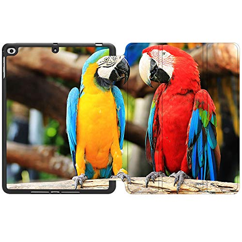 SDH New iPad 9.7 Inch 2018 2017 Case with Pencil Holder, iPad Air 1 / iPad Air 2 Smart Cover Folio Stand Protective for Apple iPad 5th 6th Gen Case (A1822/A1823/A1893/A1954), Cute Parrot 9