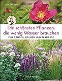 Die schönsten Pfla - ww.mettenmors.de, Tipps für Gartenfreunde
