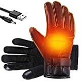 Shaboo Prints Heated Gloves Winter Thermal Gloves USB Heated Gloves Water Proof Touchscreen Heating Gloves Hand Warmers for Fishing, Motorcycling, Hiking, Cycling