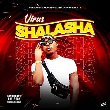 Shalasha