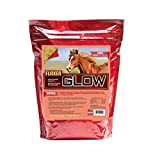 Horse Guard Glow 10 lb, Aids in Weight Gain and Improves Coat and Condition, Includes Omega-3's