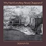 Why Hasn´T Everything Already Disappeared? [Vinilo]