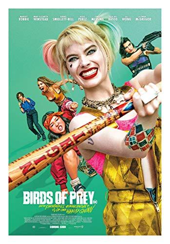 51EJWNNL-YL Harley Quinn Birds of Prey Posters