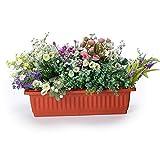 JonesHouseDeco Caja de Plástico para Ventana, Maceta Rectangular, Jardinera de Verduras para Alféizar de Ventana, Balcón, Patio, Color Terracota 50 cm de Longitud # 4160