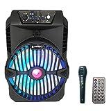Altavoz karaoke Inalámbrico portátil con micrófono recargable alta potencia Reproductor Radio FM MP3 USB SD (4807)
