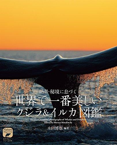 世界で一番美しい クジラ&イルカ図鑑: 絶景・秘境に息づく (ネイチャー・ミュージアム)の詳細を見る