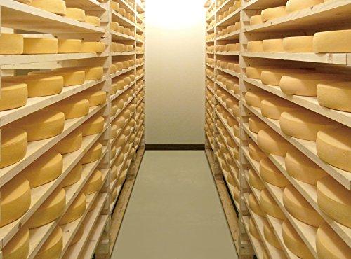 花畑牧場ラクレットチーズハーフタイプ(業務用)不定貫(約2.3kg~約2.7kg)