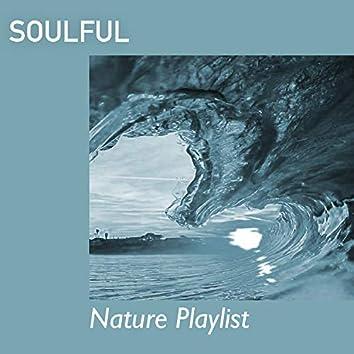 # Soulful Nature Playlist