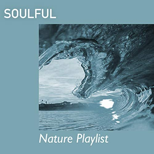 Raining Ambience & Nature Sounds Artists