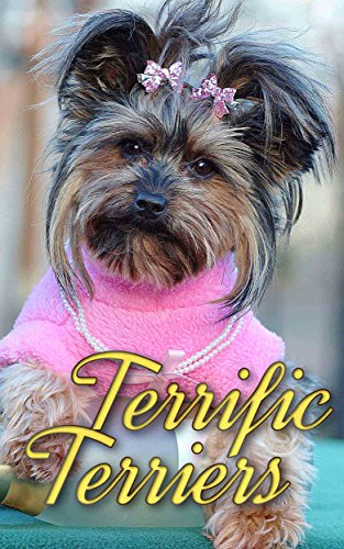 Terrific Terriers (Dogs Picture Book -...