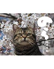 2021貓カレンダー のら ([カレンダー])
