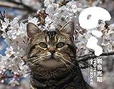 2021猫カレンダー のら