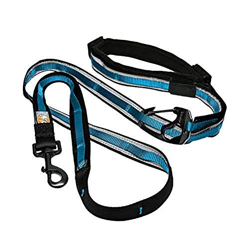 Kurgo 6 In 1 Hands Free Dog Leash | Reflective Running Belt Leash for Dogs | Crossbody amp Waist Belt Leash | Carabiner| Padded Handle | for Training Hiking Or Jogging | Quantum Leash Coastal Blue