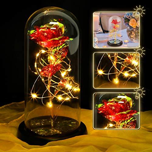 Fanspack Rosa Eternal Bajo Campana –Rosa Encantada Rosa Eterna Luminosa Cúpula de...