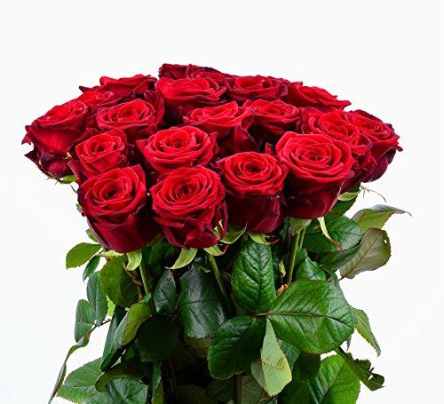 Blumenversand - Blumenstrauß mit 20 Stück duftenden Rote Rosen